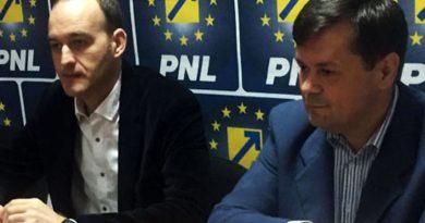 Romanescu nu atentează la fotoliul lui Vâlceanu