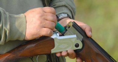 Câinii unei femei din Baia de Fier, uciși cu o armă de vânătoare