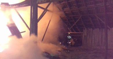 O fermă din Gorj a fost mistuită de flăcări. 39 de animale au fost salvate în ultimul moment